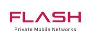 Flash mobile logo